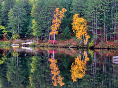 Lake St. Peter (ick Harris) Tags: autumn ontario canada fall lakestpeter