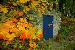root cellar (snapstill studio) Tags: color fall leaves fallcolor michigan root cellar rootcellar petoskey martinmcreynolds