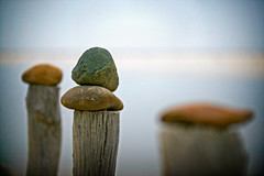 stones on sticks (phitar) Tags: art beach rock sticks still topf50 stones zen unreal bokehsoniceoctober bokehsoniceoctober11