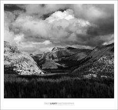 plate 602. (koaflashboy) Tags: mountains mediumformat landscape nationalpark 500v20f fineart duotone yosemitenationalpark 12 tenayalake ilfordfp4 mamiyarb67 yosemiteblogcom 1500v60f 1000v40f 250v10f pprowinner