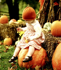 On a big pumpkin! (*Pretty in Pink*) Tags: autumn baby cute fall leaves kids children interestingness pumpkins adorable explore precious exploretop20 ellabrooke