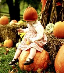On a big pumpkin! (*Pretty in Pink*) Tags: autumn baby cute fall leaves kids children interestingness pumpkins adorable explore precious exploretop20 ellabrooke