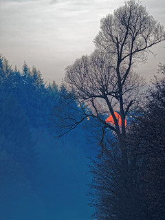 The Colours of Winter