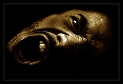 Trapped (brunoat) Tags: portrait blackandwhite bw selfportrait man blancoynegro sepia lafotodelasemana retrato fear autoretrato anger ira autorretrato emotions eos350d miedo virado toning canonefs1785mmf456isusm brunoat ltytr lfs122006 brunoabarca