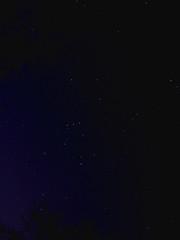The Hunter (Furryscaly) Tags: longexposure nightphotography blue winter sky nature night speed dark stars outdoors evening belt md long exposure pretty december nocturnal space deep maryland columbia eerie bull creepy orion betelgeuse rigel s