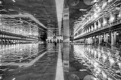 AQVA ALTA (U1D2X) Tags: acqua alta high water piazza san marco saint mark square venice venezia pioggia marea campanile basilica