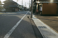 streets of Samegai (miho's dad) Tags: carlzeisstessart2845 contaxrx fujicolorc200