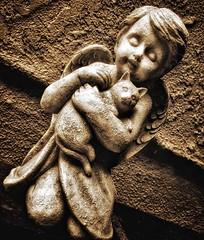 angel (sepia) (hugh.c.mcbride) Tags: angel cat statue sepia iphone