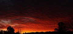Sunrise 3 22 18 #18 Panorama e (Az Skies Photography) Tags: sun rise sunrise morning dawn daybreak cloud clouds red orange salmon black yellow gold golden sky skyline skyscape rio rico arizona az riorico rioricoaz arizonasky arizonaskyline arizonaskyscape arizonasunset canon eos 80d canoneos80d eos80d canon80d march 22 2018 march222018 32218 3222018