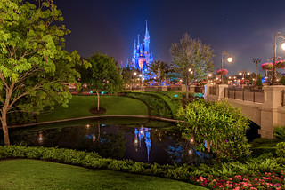 One Magical View