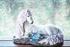 unicorn magic (sure2talk) Tags: unicornmagic unicorn mythical nikond7000 nikkor1855mmf3556afs bokeh sparkle shimmer shallowdof 118picturesin201883fantasybeingscreatures