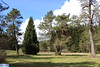 IMG_5788 (superingo78) Tags: monschau höfen narzissen blüte frühling natur schön