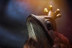 Iron Henry (Uniquva) Tags: macromondays onceuponatime frogprince grimm fairytale