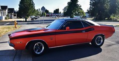 1971 Dodge Challenger R/T (Custom_Cab) Tags: 1971 dodge challenger rt orange car hardtop coupe 340 4v v8 four barrell barrel
