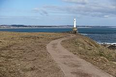 DSC05139 (LezFoto) Tags: sonydigitalcompactcamera rx100iii rx100m3 sony dscrx100m3 cybershot sonyimaging sonyrx100m3 compactcamera pointandshoot northeastcoast northsea aberdeen scotland unitedkingdom coastalpath