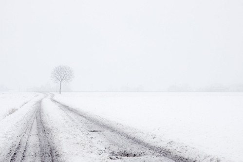 """Winter in Skåne • <a style=""""font-size:0.8em;"""" href=""""http://www.flickr.com/photos/150102734@N08/27164078328/"""" target=""""_blank"""">View on Flickr</a>"""