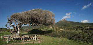 Tavola con vista - Table with a view