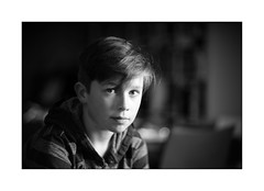 Thomas (Istvan Penzes) Tags: leicammonochromtyp246 penzes manualfocus rangefinder availablelight handheld bw black white bw106nd18filter leicasummilux75mm thomas elinchrom400elbquadrahs elinchromrotalux70x70 portrait