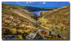 View to The Reservoir (jeremy willcocks) Tags: viewtothereservoir meldon dartmoor devon ukjeremywillcocksc2018fujixpro2xf1024mm landscape moor mooors colour water rocks trees view wwwsouthwestscenesmeuk