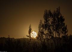 _MG_2221 (Jerseket) Tags: atardecer sun sunset sunlight crepúsculo ocaso sol solar mendoza san rafael starparty canont3i canon sigma sigmalens photoshop argentina