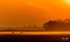 Sunrise Aarlanderveen 23 (M van Oosterhout) Tags: sunrise sun zonsopkomst nederland netherlands holland dutch alphen aan den rijn aarlanderveen windmill molen