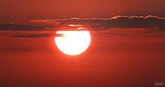 Sonnenuntergang mit Wolken (LXXXVI) Tags: sonnenuntergang kiel förde frühling kielerförde aprilorange rot sunset wolken möwe möwen dächer windrad windrädernahaufnahme sky himmel norden schleswigholstein ostsee baltic meer küste