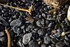 Sea Coal (Rhubus) Tags: coal fossil fuel seacoal energy flammable rock old washed coastal black lots rounded