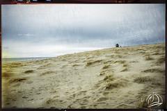 Race Point Long View (uselessbay) Tags: 2018 beach massachusetts nikon nikond700 places provincetown racepointbeach uselessbayphotography williamtalley d700 digital fullframe landscapes uselessbay usa