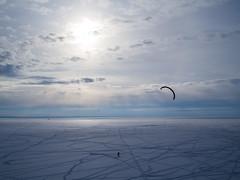 Snowkiting in Neva Bay