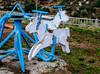 A day at the races(85/365) (Walimai.photo) Tags: horse caballo madera wood playground parque infantil portugal castelo mendo nikon d7000 nikkor 35mm azul blue bleu white blanco color colour detail detalle