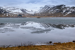 Reflection of Icelandic mountain on partially frozen lake (DebbieFirkins) Tags: iceland mountains cold frozen ice lakes rivers snow reflection mirrorimage glacial water icy still peaceful tranquil restful