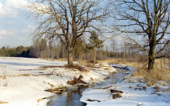"Stream (""Photo Guy"") Tags: 35mmcolourfilm jupiter8lens56 landscape winterlandscape zorky41956"