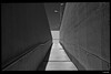 WP_20180401_12_09_29 (anto-logic) Tags: street strada bw bn blackandwhite biancoenero muro wall sottopasso underpass cielo sky clear terso streetshot puntodivista profonditàdicampo luce light vintage pointofview depthoffield focus beautiful pov dof bokeh nice pretty cute gorgeous wonderful photoshop effects effetti filtro filter postproduction postproduzione pp pc lightroom alien skin sharpen play handsome lighting fabulous lumia950 microsoft