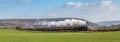 The Whitby Flyer 14-4-2018 (KS Railway Gallery) Tags: railtour uk steam whitby flyer battersby junction