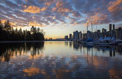 The Colours Of The Morning (Clayton Perry Photoworks) Tags: vancouver bc canada winter explorebc explorecanada clouds reflection skyline coalharbour stanleypark