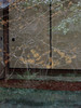 Phantom Taizouin-Temple Kyoto (atria2718) Tags: japan nippon kyoto 日本 京都 退蔵院 glassdoor reflection hamamelis tree reaf fusuma 映り込み 花 マンサク ガラス 襖 緑 flower