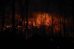 DSCN4191 (David J. Thomas) Tags: mirrorlake blanchardspringsrecreationarea fiftysix mountainview arkansas forestfire proscribedburn flames