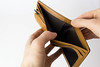 Empty wallet (wuestenigel) Tags: manhand euro hand empty money euros whitebackground wallet woman frau people menschen business geschäft one ein paper papier isolated isoliert wear tragen adult erwachsene leather leder indoors drinnen education bildung fashion mode man mann literature literatur bookbindings buchbindungen elegant girl mädchen shopping einkaufen writing schreiben