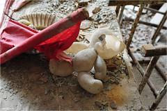 In a Pripyat School (Aad P.) Tags: chernobyl чорнобиль pripyat припять ukraine україна sovietunion cccp nuclearpowerplant radioactivity radiation urbex urbexphotography exclusionzone school classroom toy bear plasticbear