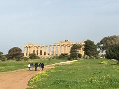 IMG_6001 Selinunte (2) (archaeologist_d) Tags: sicily italy selinunte archaeologicalsite archaeologicalruins templee templeofhera