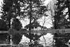 IMG_1241 (I-Like-My-Fotos-RAW) Tags: blackandwhite reflections water wasser trees tree baum bäume see lake nature natur schwarzweis bild 18mm canon eos200d