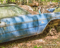 Old Car City 93 (augphoto) Tags: augphotoimagery demon dodge abandoned auto automobile blue car decay old weathered white georgia unitedstates