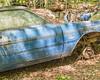 Old Car City 93 (augphoto) Tags: augphotoimagery demon dodge abandoned auto automobile blue car decay old weathered white georgia unitedstates