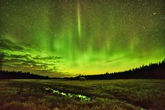 Norrsken 13 jan (johan.bergenstrahle) Tags: norrsken aurora northernlight winter vinter 2018 januari january finepicsse natur landskap landscape