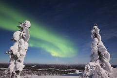 Northern lights - Aurores boréales (Mathieu Pierre) Tags: northern lights aurores boréales lapland canon 7dmark2 7dmarkii sigma14mmf18 sunset trees winter nature frost arctic hill finland nuit night sky ciel paysage