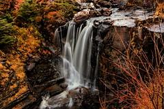 Victoria Falls (jakeof) Tags: lochmaree victoriafalls waterfall scotland