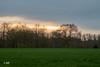 Rain is coming (MF[FR]) Tags: grass tree sun sky clouds sunset trees parc de sceaux antony france ile samsung nx1 coucher soleil nuage cloudscape