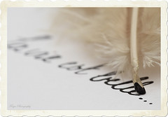 La vie est belle... (Maria Godfrida) Tags: macromondays backintheday feather pen plume macro closeup letters write quillpen 7dwf writing weeklythemes graphicdrawingwriting