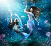 The Jellyfish chase (meriluu17) Tags: mermaid mermaids sirens siren merfolk aqua blue undersea sea underwater swim bubbles jellyfish fish scale scales fantasy sisters play playful chase hextrordinary surreal