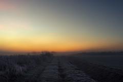 Colors of a frozen Morning (Netsrak) Tags: baum bäume dezember eu europa europe herbst landschaft morgen natur nebel sonne sonnenaufgang autumn december fall fog landscape mist morning nature sun sunrise tree trees